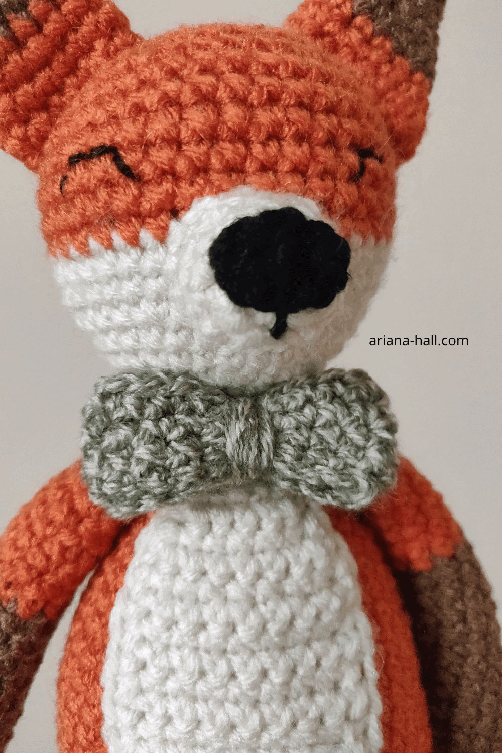 Orange fox with a green bow tie.